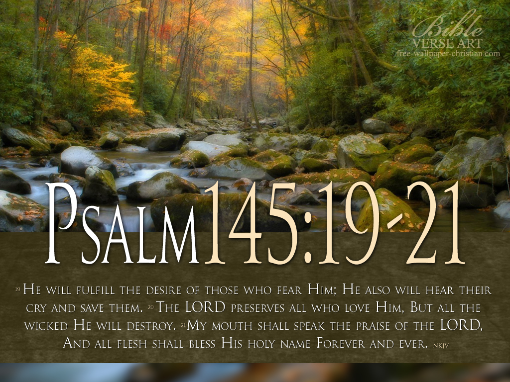 Scripture Wallpaper A View from the Nest Page 2 1024x768