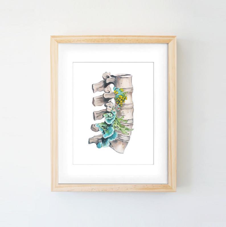 Floral Lumbar Spine White Background Vertebrae Print of Oil Etsy 794x797