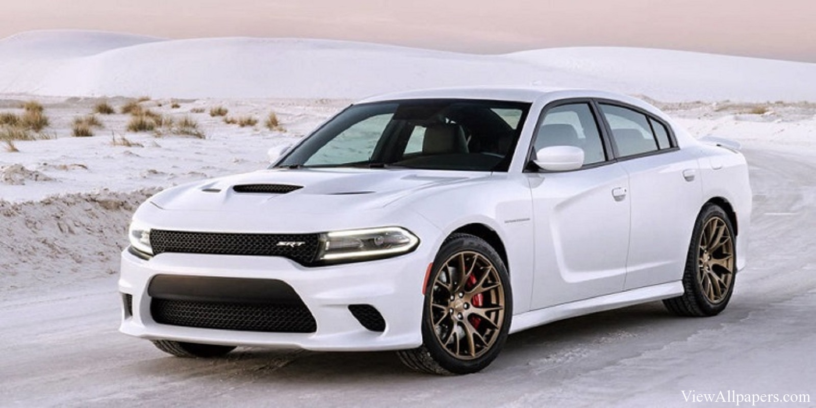 2016 Dodge Charger High Resolution Wallpaper download 2016 Dodge 1600x800