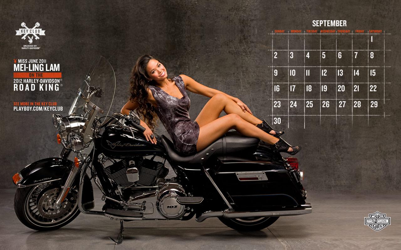 Harley Davidson Motorcycles Wallpaper 5   PhotosJunction 1280x800