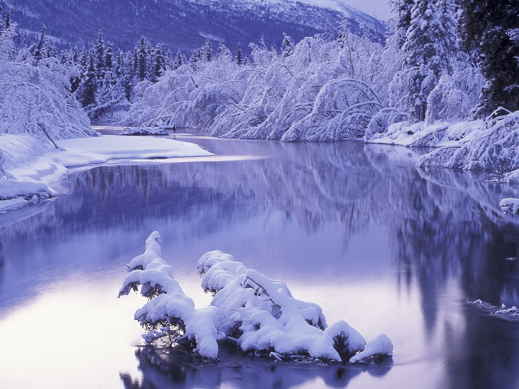 Wallpapers Winter wallpaper 1024x768