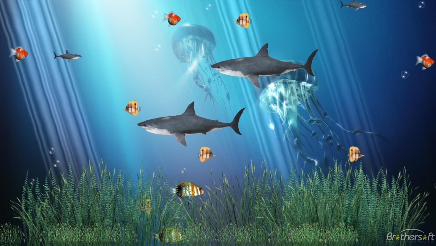 Aquarium Animated Wallpaper Coral Reef Aquarium Animated Wallpaper 1 1482x836