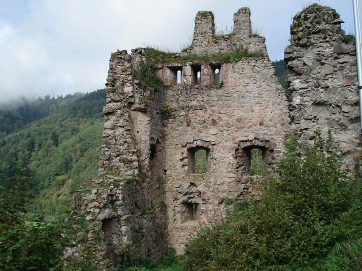 Triberg The Black Forest Germany Castles Pinterest 728x546
