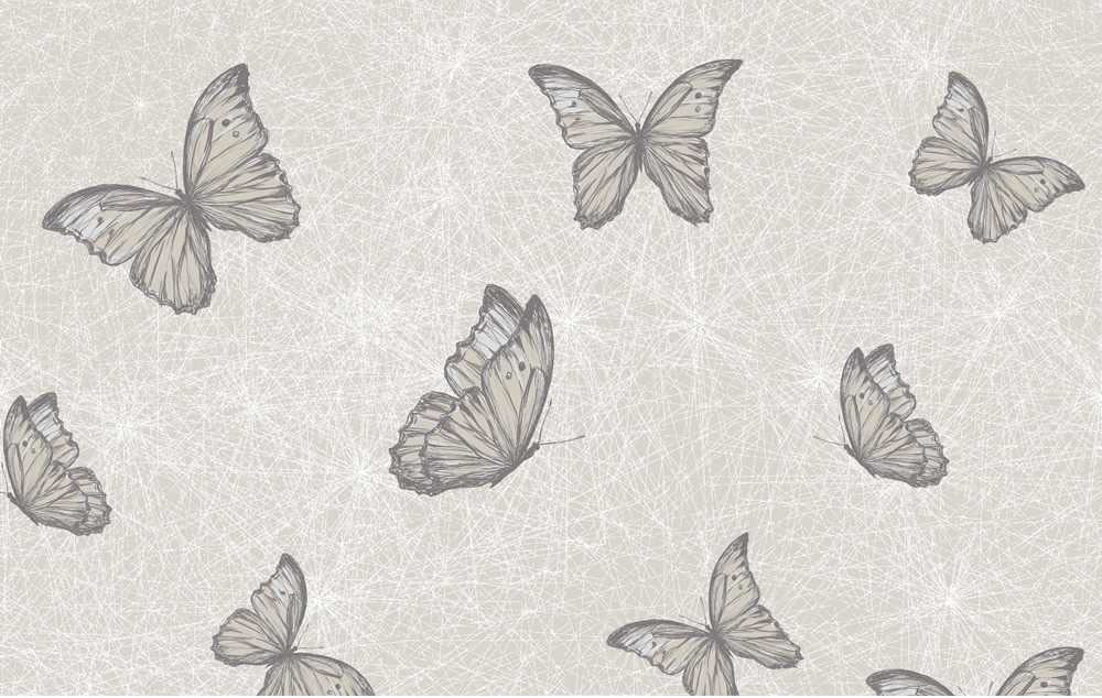Top 5   Butterfly Wallpapers   Alice In Beautyland 1000x634