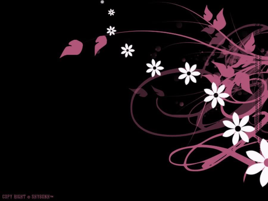 Black White And Pink Backgrounds 10 Hd Wallpaper 900x675