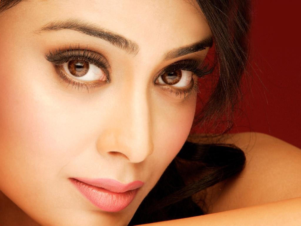 Actress Shriya Beautiful Wallpapers HD Wallpapers 1024x768