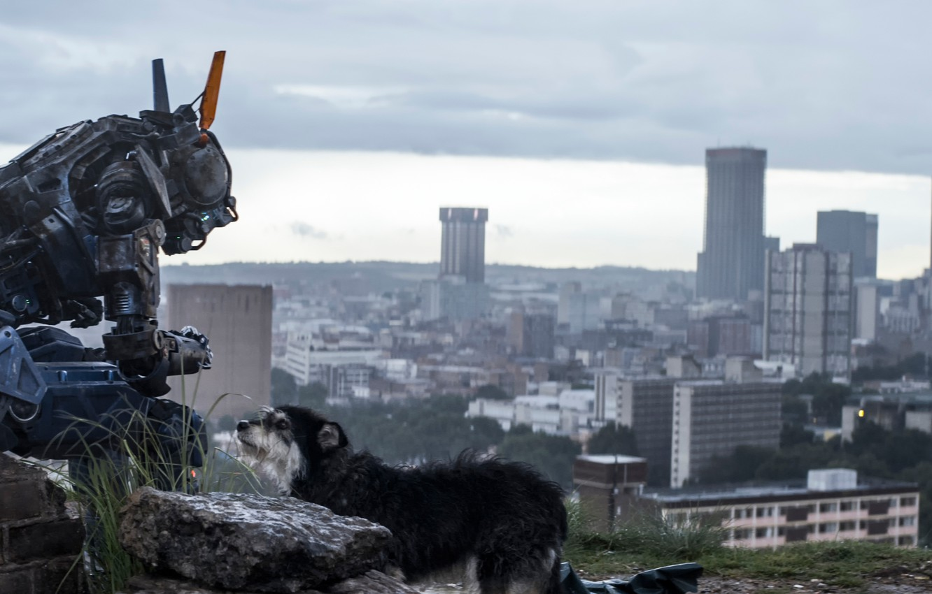 Wallpaper Chappie The robot named Chappy I am wonder I am 1332x850