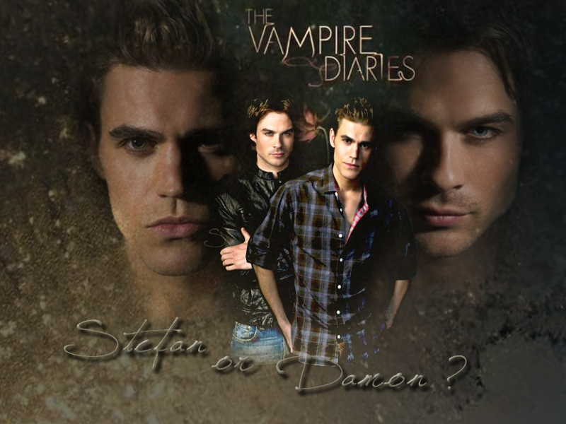 Stefan or Damon   Stefan Salvatore Wallpaper 21473191 800x600