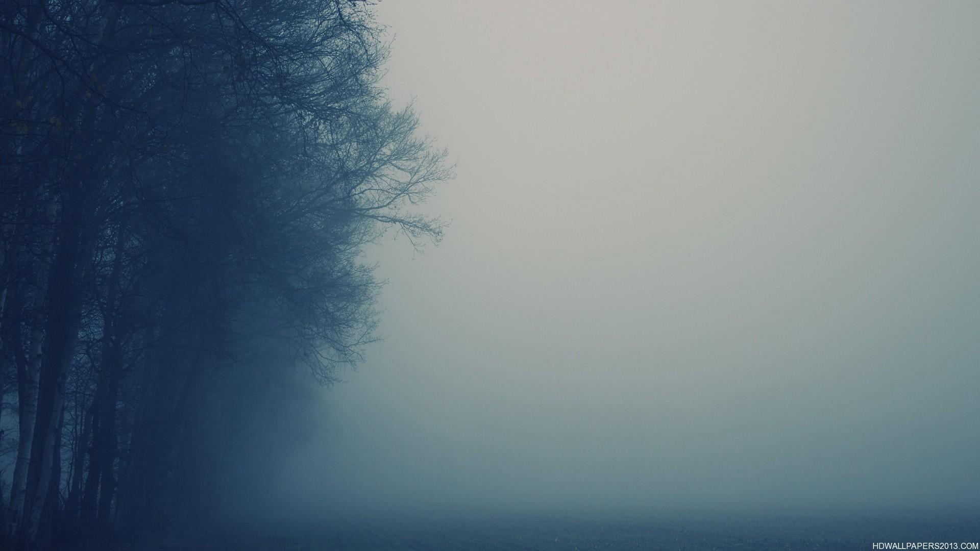 Fog Wallpapers HD - WallpaperSafari Dark Forest Wallpapers Widescreen