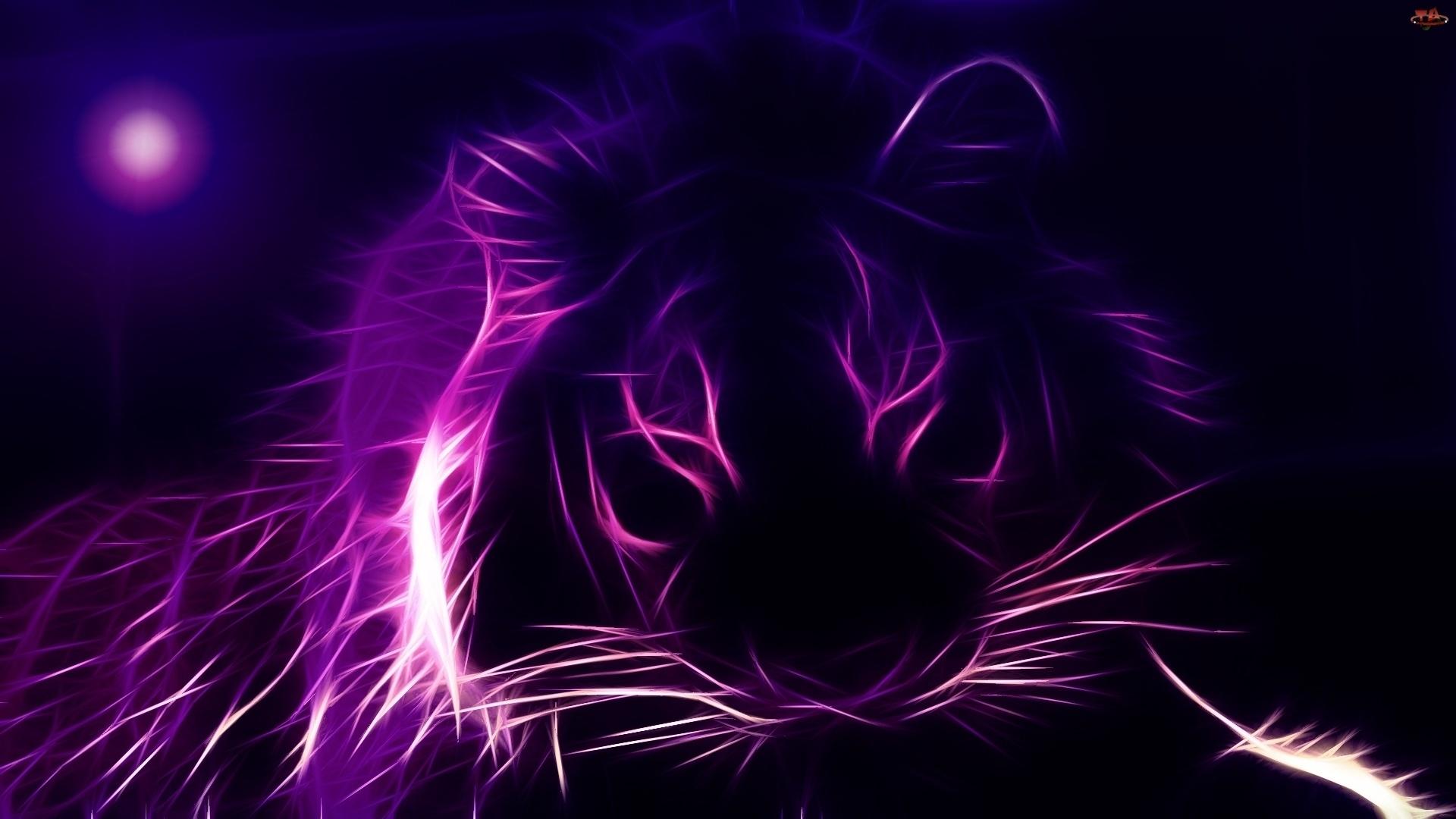 Purple Tiger Wallpaper   Best Wallpapers 1920x1080