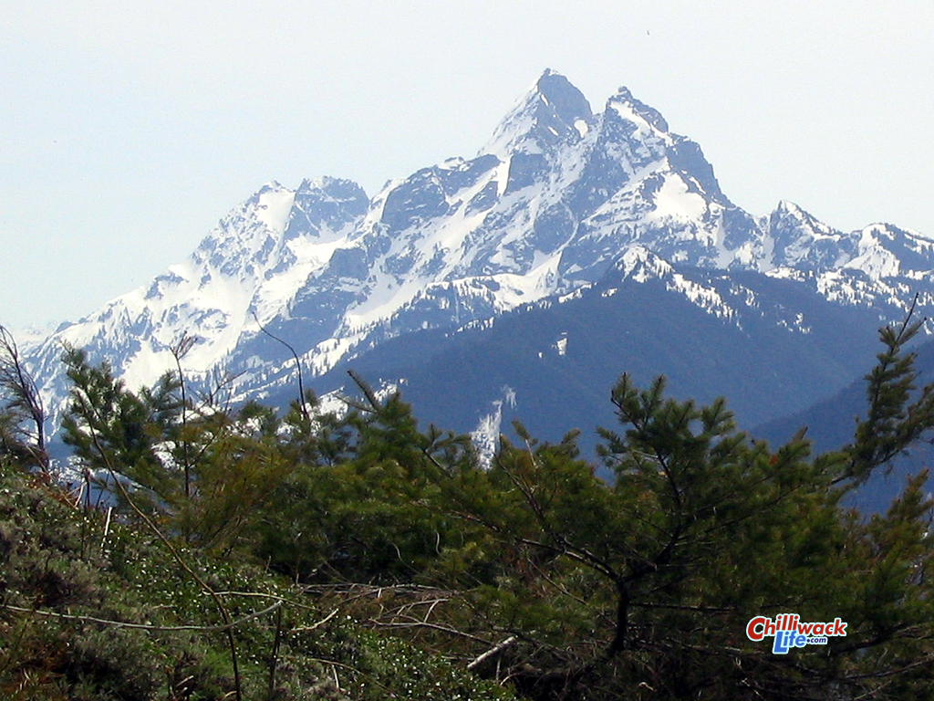 Mountain across to Border Peaks Chilliwack British Columbia Canada 1024x768