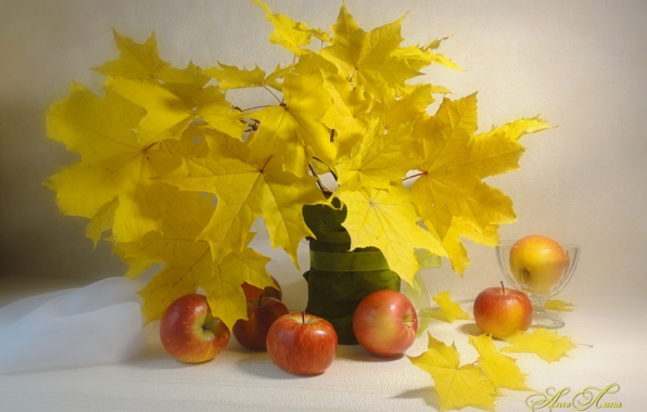 Still life style shape leaf wallpapers photos pictures 596x380