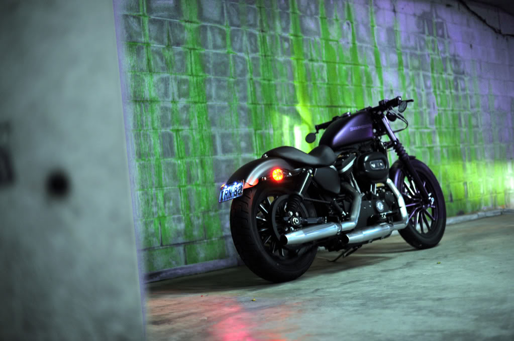 Free download New artistic shots of my Iron 883 HD FORUMS
