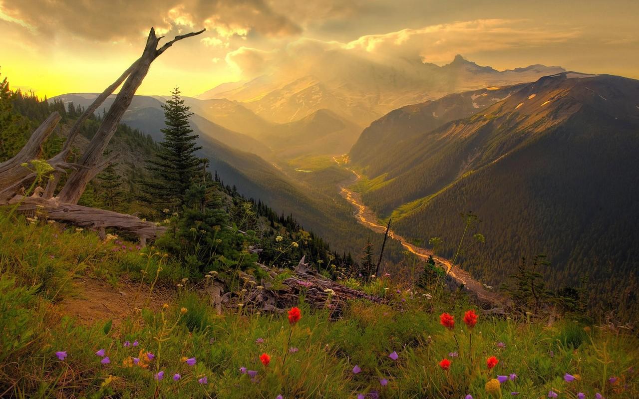 Mount Rainier National Park wallpaper 6176 1280x800