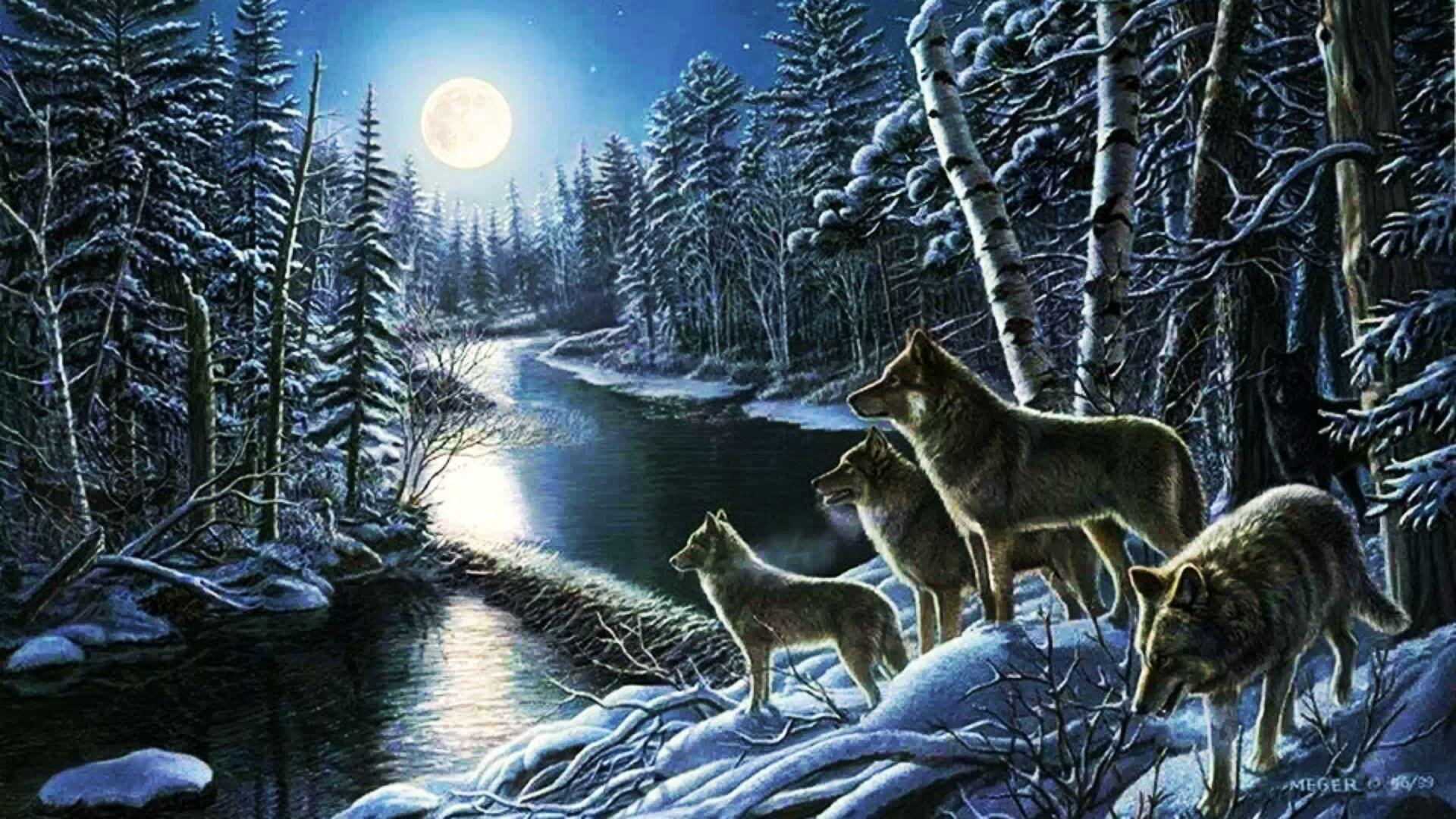 white wolf pack Desktop