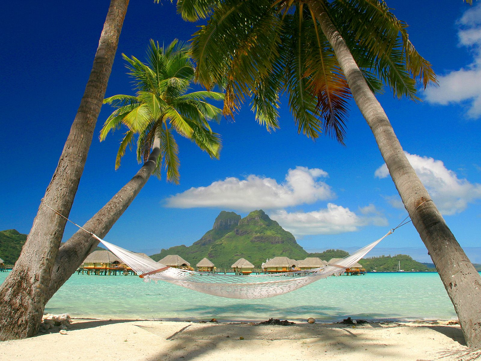 hd tropical island beach paradise wallpapers and backgrounds 1600x1200