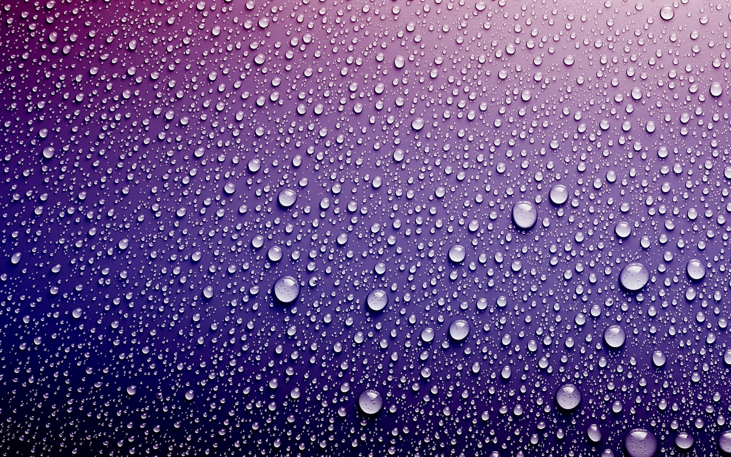 Background Beautiful Water Drops Texture Pink Purple Shade Wallpaper 2560x1600