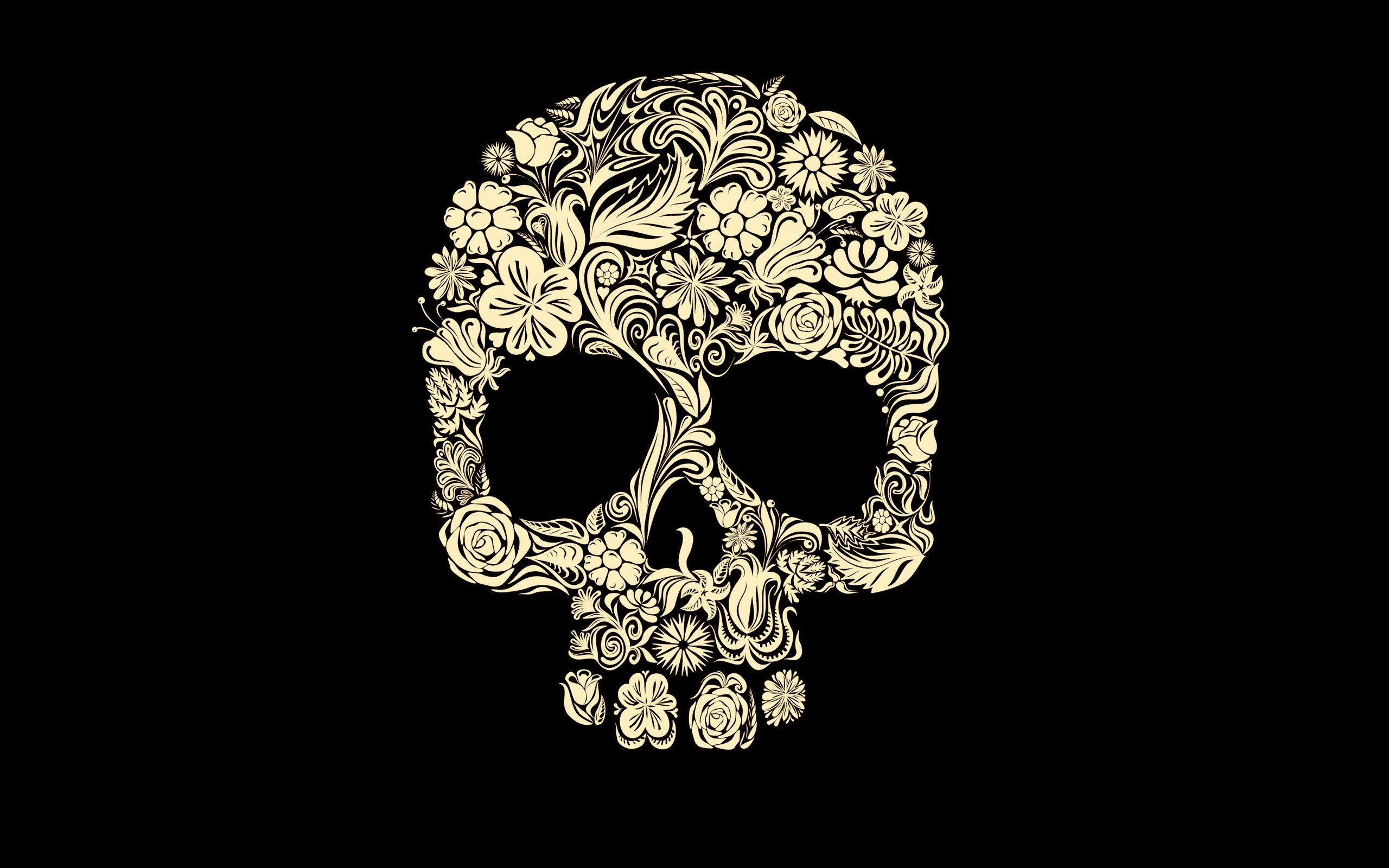 Dark Skull Wallpaper 2560x1600 Dark Skull 2560x1600