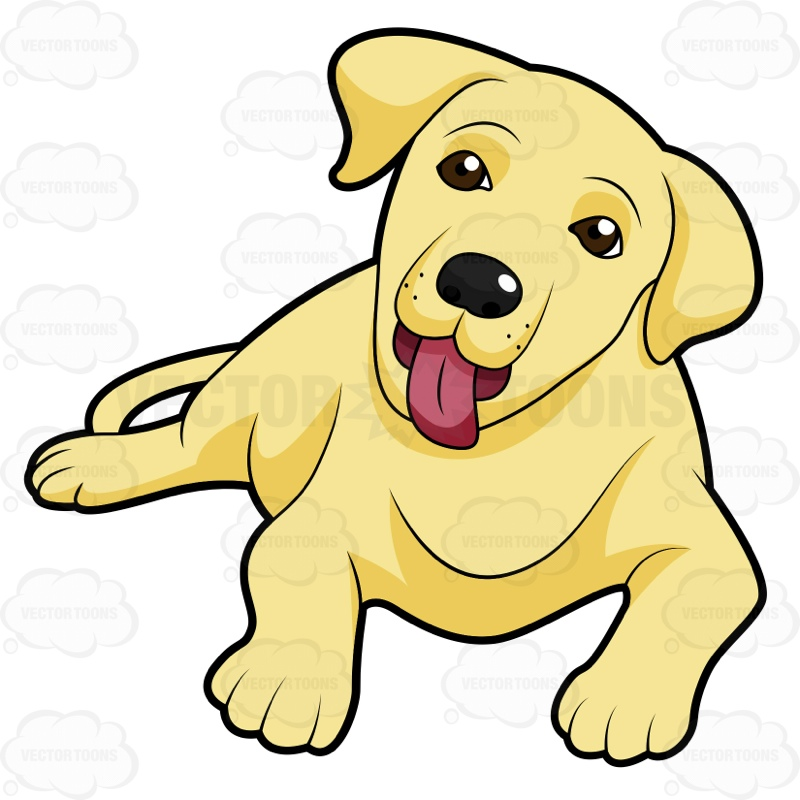 Yellow Labrador Puppy Lying Down With Its Tongue Sticking Out Cartoon 800x800