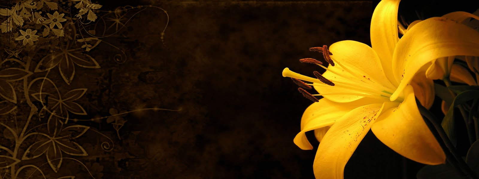 3D Flowers Wallpapers Flowers Pictures Flowers Wallpapers Red 1600x600