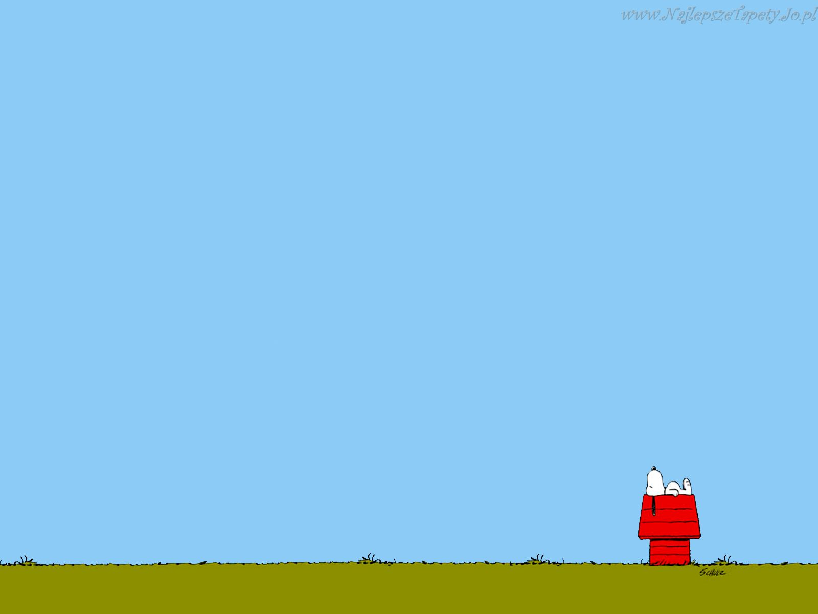 Snoopy Charlie Brown Peanuts Comic Strip wallpaper background 1600x1200