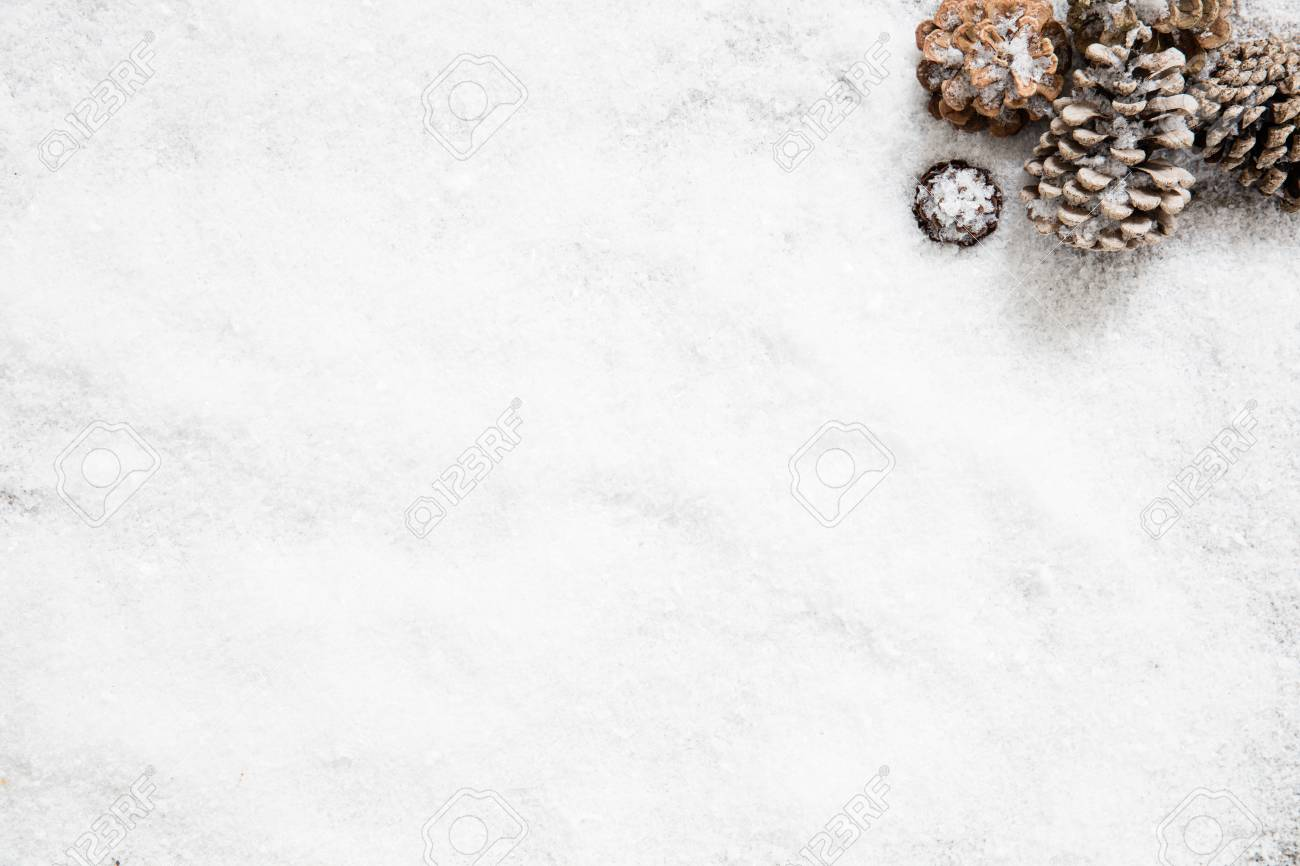 Winter Snowy Wallpaper With Frozen Fir Cones For White New Years 1300x866