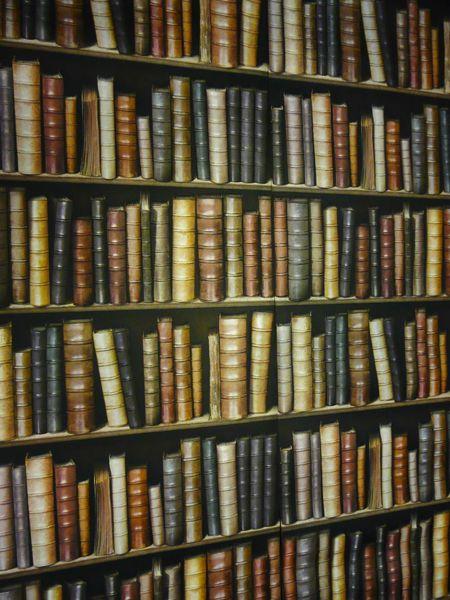 Decorpassion Bookshelf wallpaper is less than 20 a roll 450x600