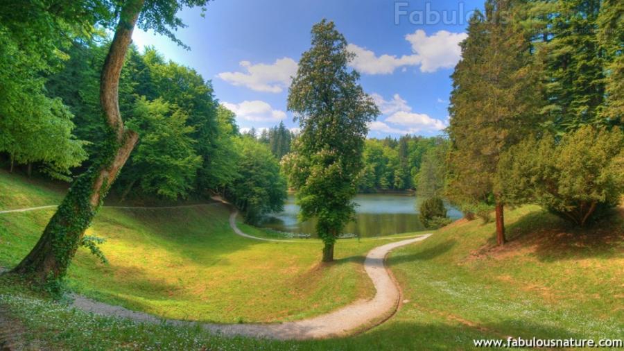 fabulous nature desktop wallpaper   wwwwallpapers in hdcom 900x506