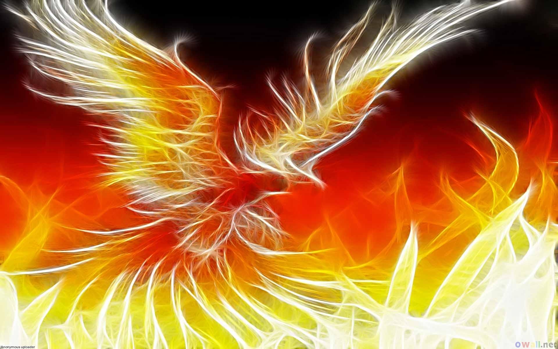 Picture Phoenix Bird For Desktop 1920x1200