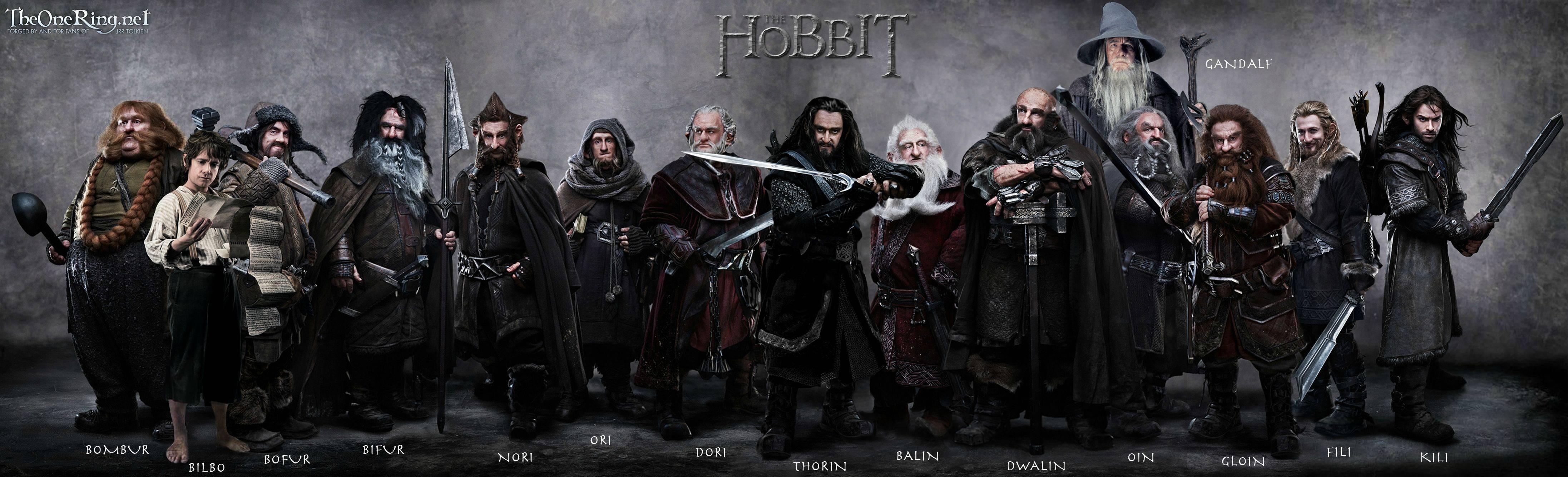 the hobbit wallpaper   The Hobbit The Desolation of Smaug Wallpaper 4387x1335