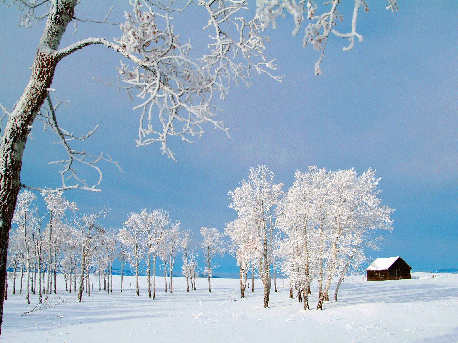 Winter Extra Woodsy Cabin Wallpapers For Desktop Backgrounds HD 1600x1200