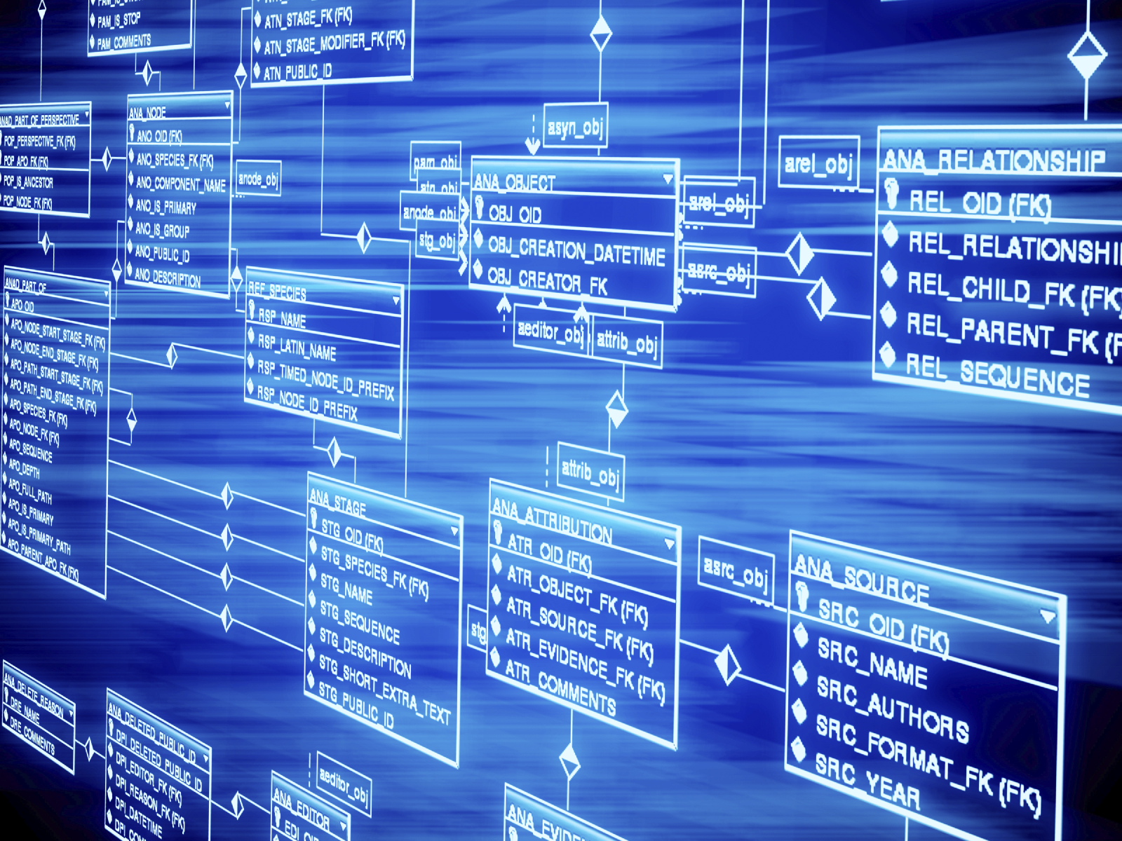 Data Model of SAP Bill of Materials Explosion 1600x1200