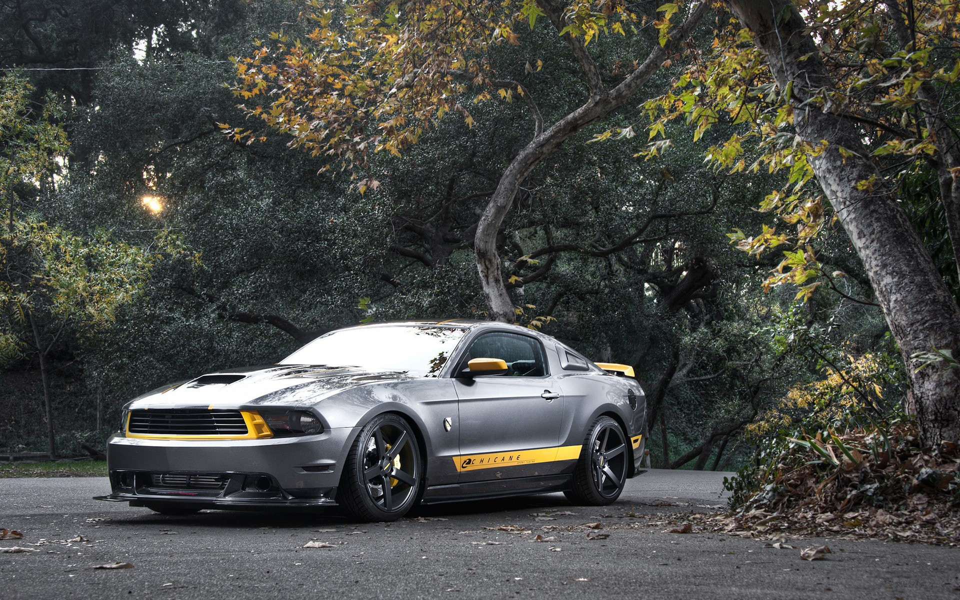 Ford Mustang muscle car vehicles wallpaper wallpapers and images 1920x1200
