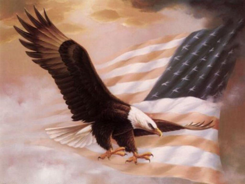 United States Flag Eagle Background 1024x768