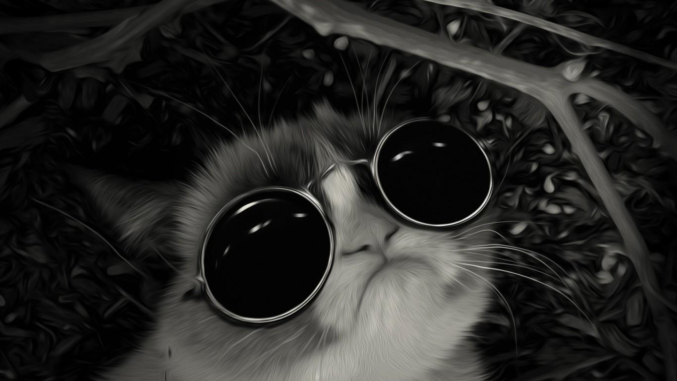 Photo collection cat wallpaper tumblr 1366x768 - Photo wallpaper ...