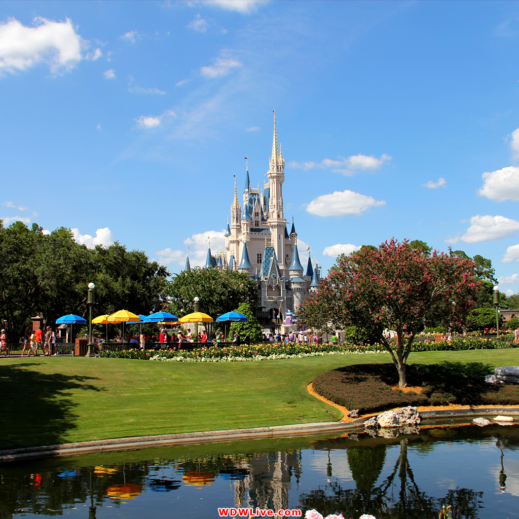 Disney World Wallpaper 1024x1024
