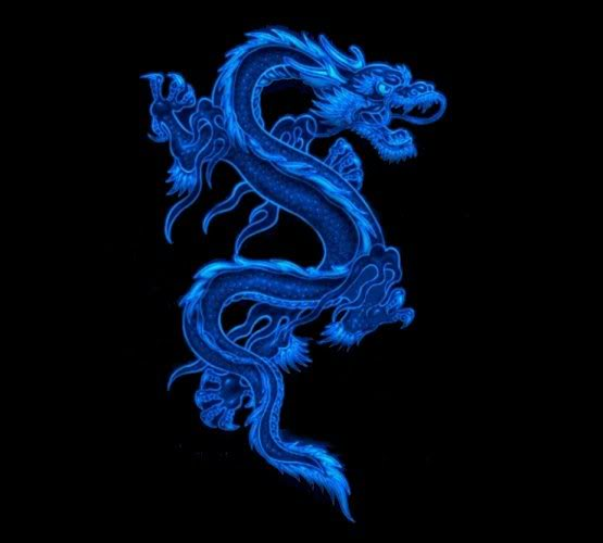 blue dragon wallpaper wallpapersafari