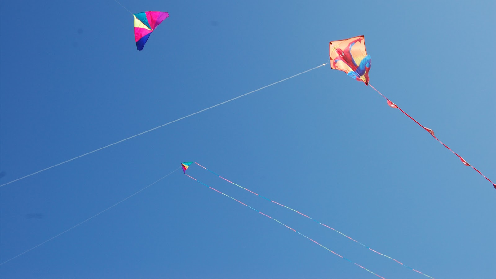 Kites HD wallpapers   pic 18   SA Wallpapers 1600x900