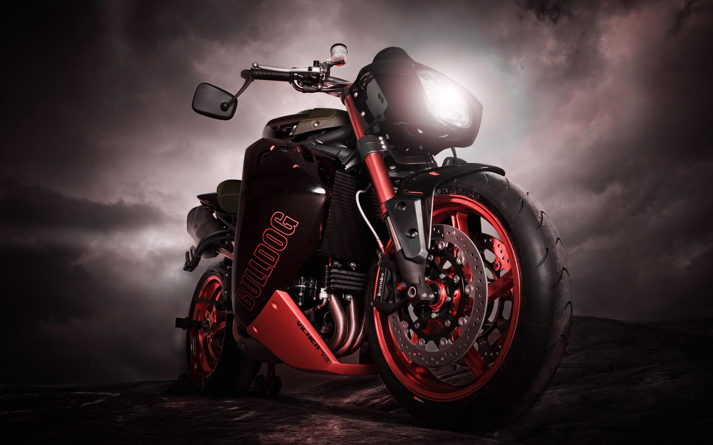 Bulldog Triumph Motorcycle HD Wallpaper 2880x1800