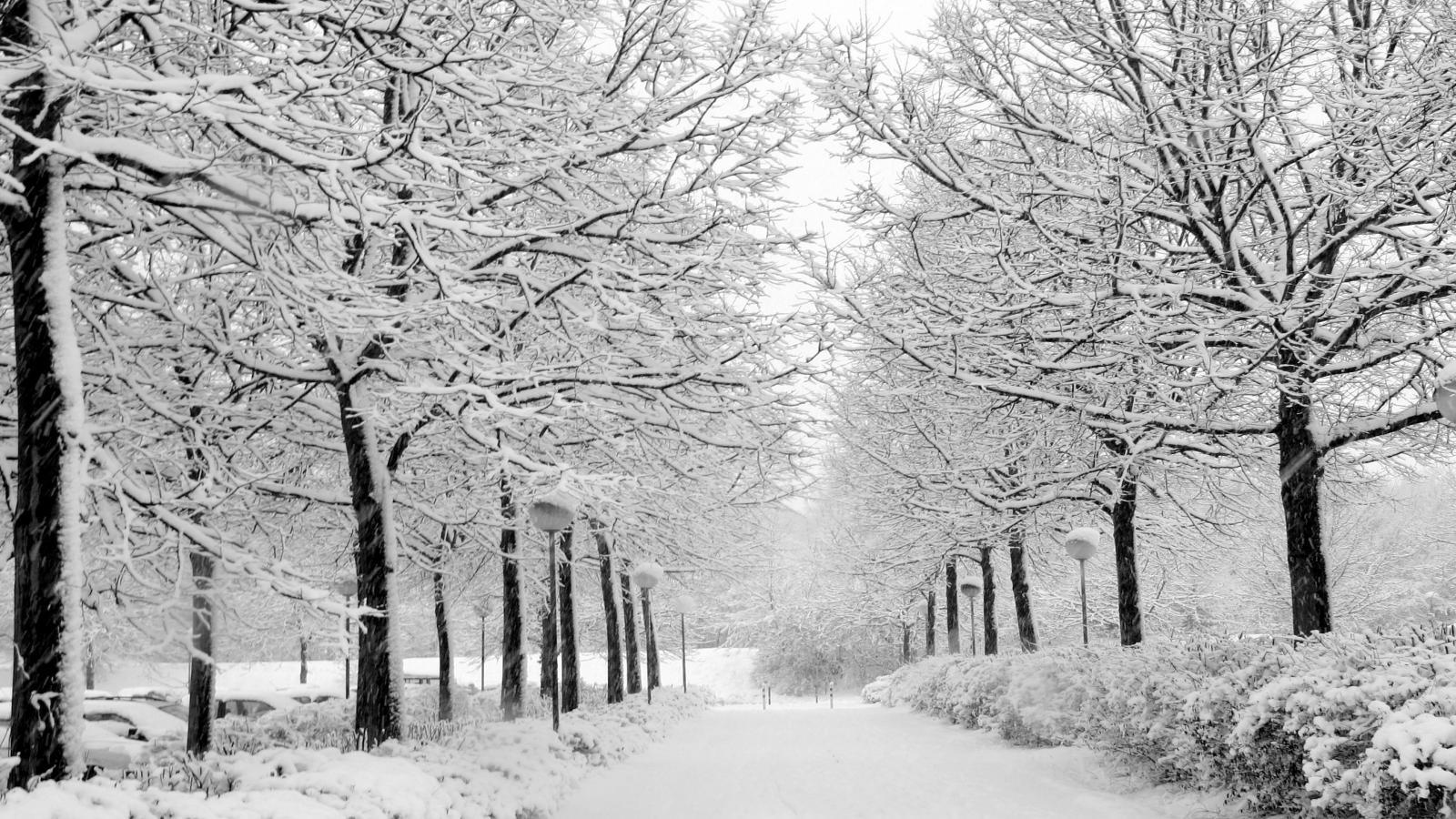 1600x900 hd desktop wallpaper winter - photo #14