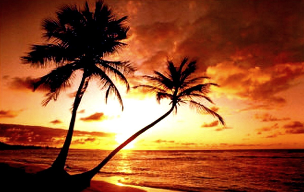 Tropical Island Sunset: Tropical Beach Sunset Wallpaper