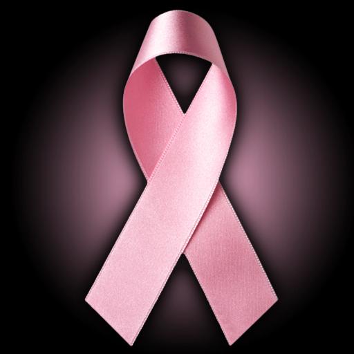 Breast Cancer Pink Rib...