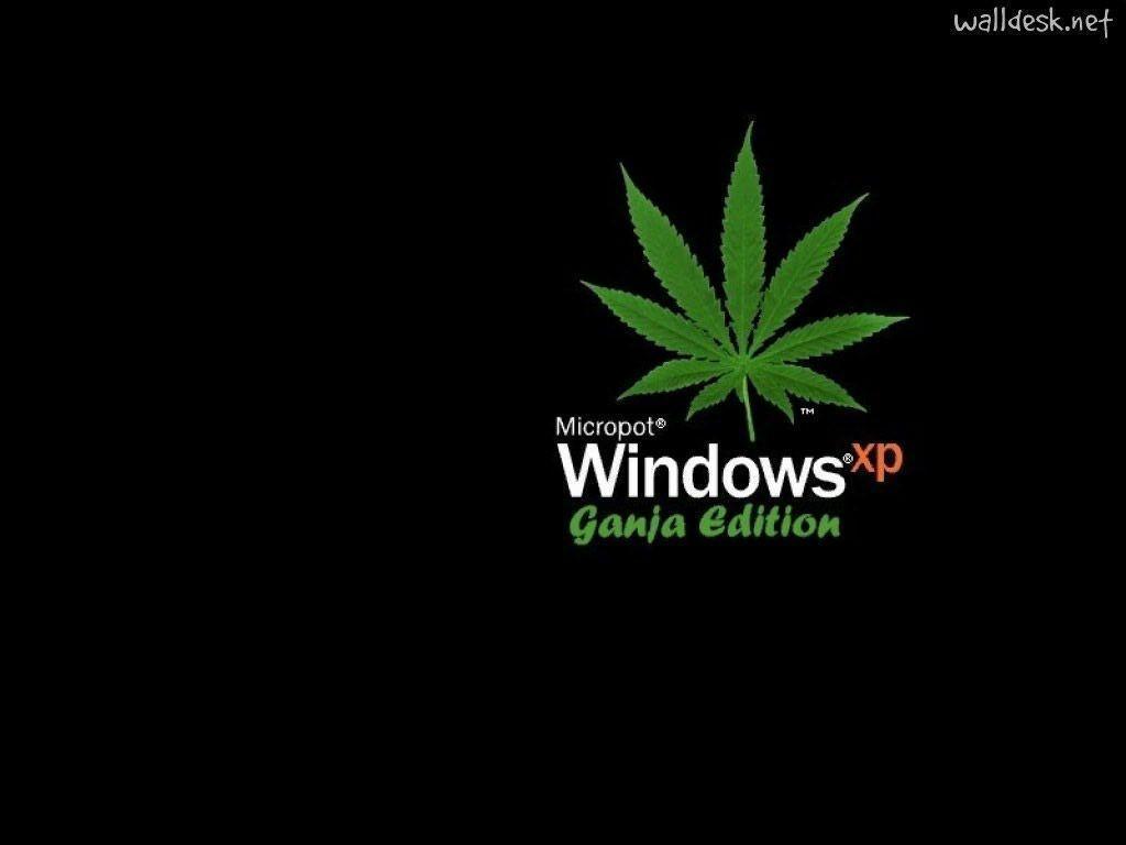 Windows 7 тема марихуана фильмы про выращивания конопли