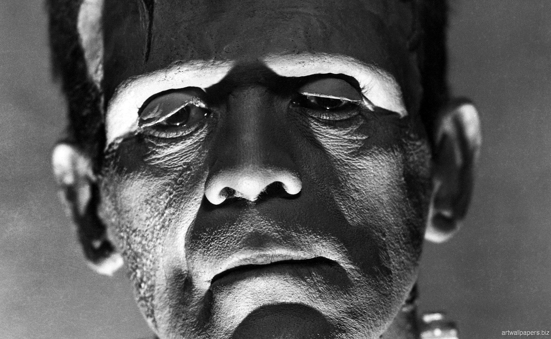 The Bride Of Frankenstein Computer Wallpapers Desktop Backgrounds 1920x1180
