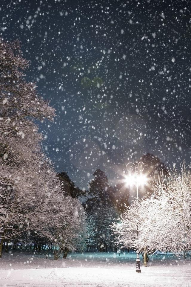 Winter Iphone Wa 640x960