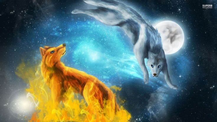 Fire And Ice Wolves Computer Wallpaper Animals Pinterest 736x414