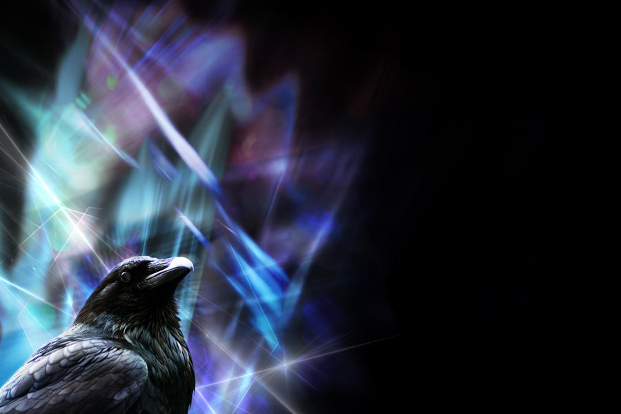 Sharp Raven wallpaper by LadyLuminal 900x600