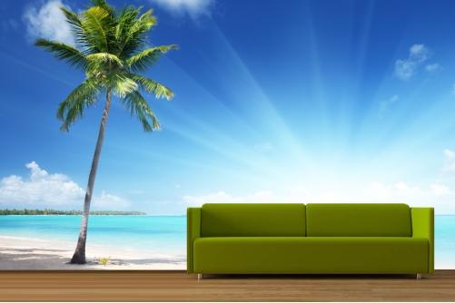 Palm Tree Beach Wallpaper 501x334
