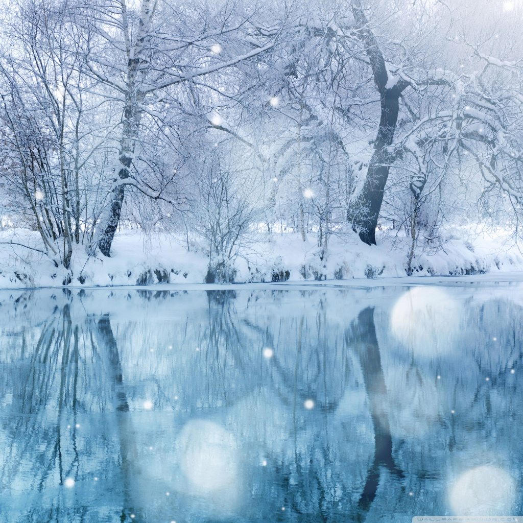 Winter Snowfall 4K HD Desktop Wallpaper for 4K Ultra HD TV 1024x1024