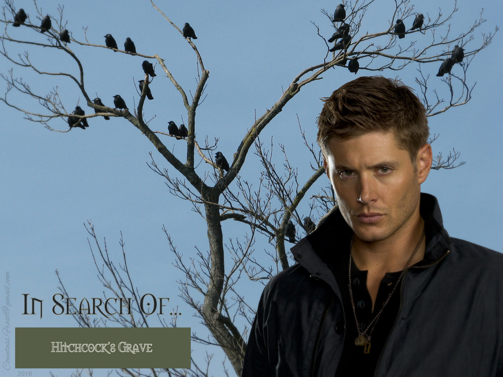 Supernatural images In Search Of Hitchcocks Grave HD wallpaper 1024x768